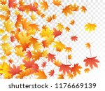 maple leaves vector  autumn... | Shutterstock .eps vector #1176669139