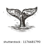 hand drawn vector whale tail.... | Shutterstock .eps vector #1176681790