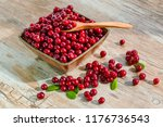 Red Ripe Fresh Cranberry Berry...