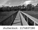 Boardwalk Crossing Over The...