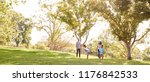 family playing soccer in park... | Shutterstock . vector #1176842533