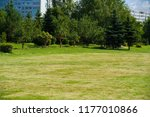 urban photography  a lawn is an ... | Shutterstock . vector #1177010866