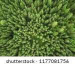 arial veiw of green alpine...   Shutterstock . vector #1177081756