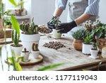 Woman Gardeners Hand...