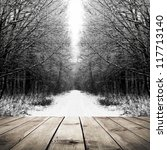 Winter Path In The Forest With...