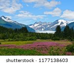 summer wildflowers in front of... | Shutterstock . vector #1177138603