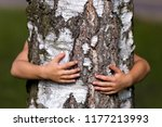 close up detail of isolated... | Shutterstock . vector #1177213993