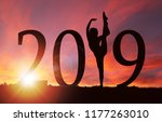 2019 new year silhouette of a...   Shutterstock . vector #1177263010