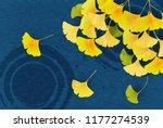 autumn leaves ginkgo biloba... | Shutterstock .eps vector #1177274539