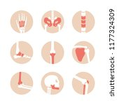 vector set of human joints with ... | Shutterstock .eps vector #1177324309