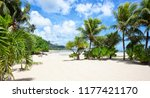 palm trees on a white sand...   Shutterstock . vector #1177421170