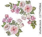 set of roses illustration... | Shutterstock . vector #1177445866