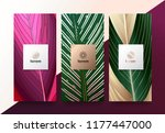 vector set packaging templates... | Shutterstock .eps vector #1177447000