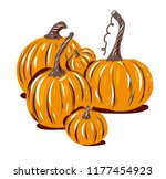 pumpkin. hand drawn vector... | Shutterstock .eps vector #1177454923