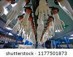 gloves factory production... | Shutterstock . vector #1177501873