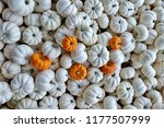large group of mini white... | Shutterstock . vector #1177507999
