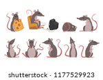 cute grey mouse set  funny... | Shutterstock .eps vector #1177529923
