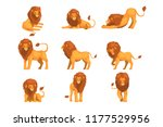 proud powerful lion character... | Shutterstock .eps vector #1177529956
