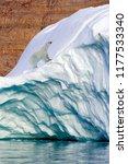 a polar bear  ursus maritimus ...   Shutterstock . vector #1177533340