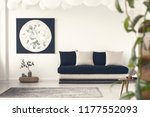 plant on pouf next to black... | Shutterstock . vector #1177552093