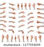 multiple female caucasian hand... | Shutterstock . vector #1177553059