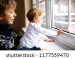 happy adorable kid boy and cute ...   Shutterstock . vector #1177559470