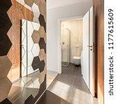 corridor with hexagonal mirror...   Shutterstock . vector #1177615609