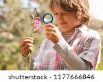 school boy in countryside trip... | Shutterstock . vector #1177666846