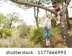 children boys in pine tree... | Shutterstock . vector #1177666993