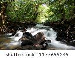 beautiful little stream at... | Shutterstock . vector #1177699249