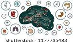 vector illustration of brain...   Shutterstock .eps vector #1177735483