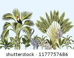 tropical vintage wild animals ... | Shutterstock .eps vector #1177757686