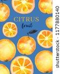 watercolor orange citrus fruit... | Shutterstock . vector #1177880140