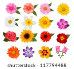 Big of beautiful colorful flowers. Vector illustration. | Shutterstock vector #117794488