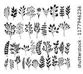 vector floral elements in... | Shutterstock .eps vector #1177946236