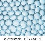 macro close up of soap bubbles... | Shutterstock . vector #1177953103