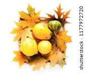 autumn composition.... | Shutterstock . vector #1177972720