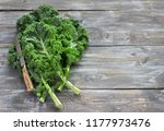 fresh green curly kale leaves... | Shutterstock . vector #1177973476