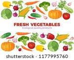 banner with vegetables on white ... | Shutterstock .eps vector #1177995760