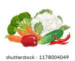 pile of vegetables isolated on... | Shutterstock .eps vector #1178004049