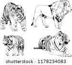 set of vector drawings on the... | Shutterstock .eps vector #1178234083