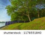 a big tree beside a beach on...   Shutterstock . vector #1178551840