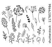 set of doodle sketch flowers on ...   Shutterstock .eps vector #1178579986