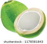 coconut isolated on white... | Shutterstock . vector #1178581843