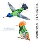 watercolor exotic birds... | Shutterstock . vector #1178652616