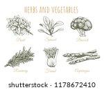 herbs and vegetables sketch... | Shutterstock .eps vector #1178672410