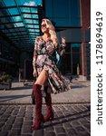 beautiful fashionable woman...   Shutterstock . vector #1178694619