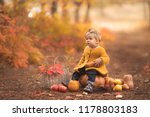 cute little girl sitting on... | Shutterstock . vector #1178803183
