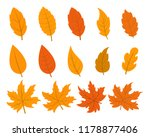 set of autumn leaves in 14...   Shutterstock .eps vector #1178877406