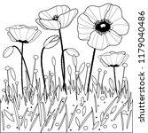 poppy flowers. black and white...   Shutterstock . vector #1179040486